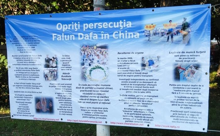 Baner al practicantilor Falun Dafa