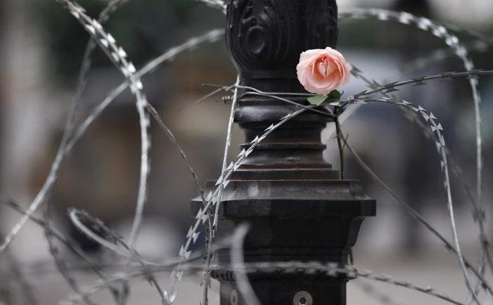 Tunisienii continua sa puna trandafiri pe sarma ghimpata pe Bulevardul Habib Bourguiba 25 ianuarie 2011 in Tunis, Tunisia.