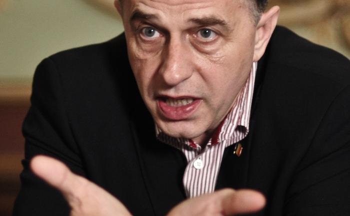 Preşedintele Senatului, Mircea Geoană.