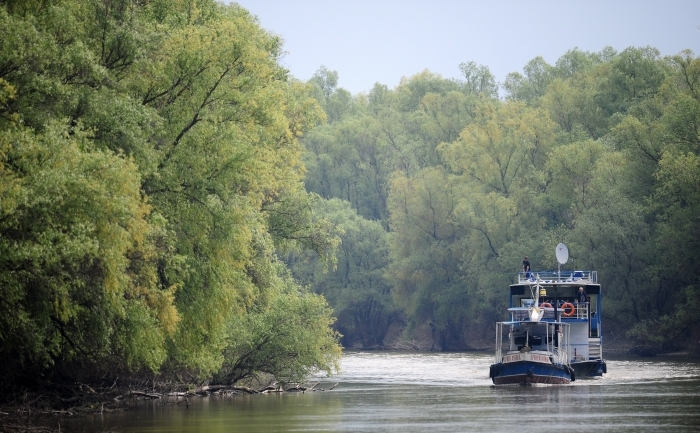 Dunărea în Deltă în apropiere de Tulcea.