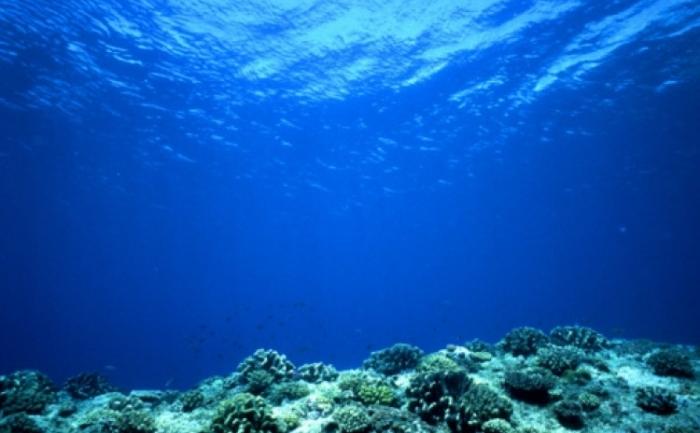 În mod normal, oxigenul atmosferic se dizolvă în apă de suprafaţă şi este dus in adâncul oceanelor prin intermediul curenţilor. Din cauza temperaturilor crescute ale mediului, oxigenul devine mai puţin solubil