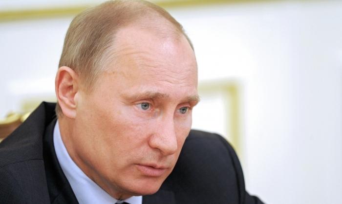 Institutul Brookings din Washington l-a acuzat, în 2006, pe Vladimir Putin că a plagiat pagini întregi dintr-o lucrare mai veche a profesorilor americani William King şi David Cleland.