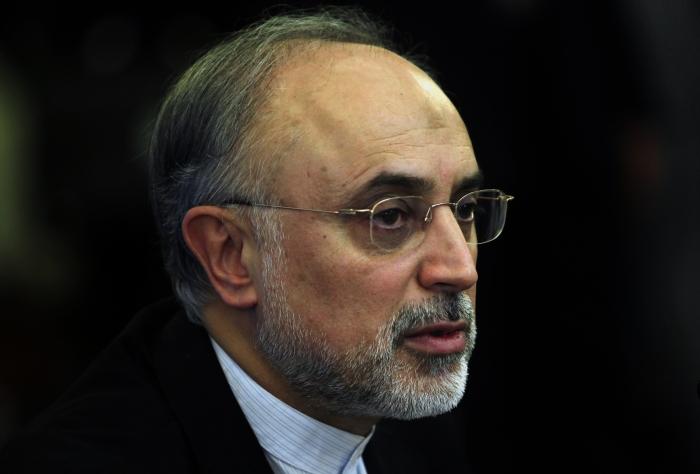 Ali Akbar Salehi, directorul Organizaţiei Iraniene pentru Energie Nucleară.