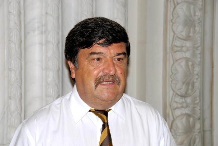 Tini Greblă,PSD
