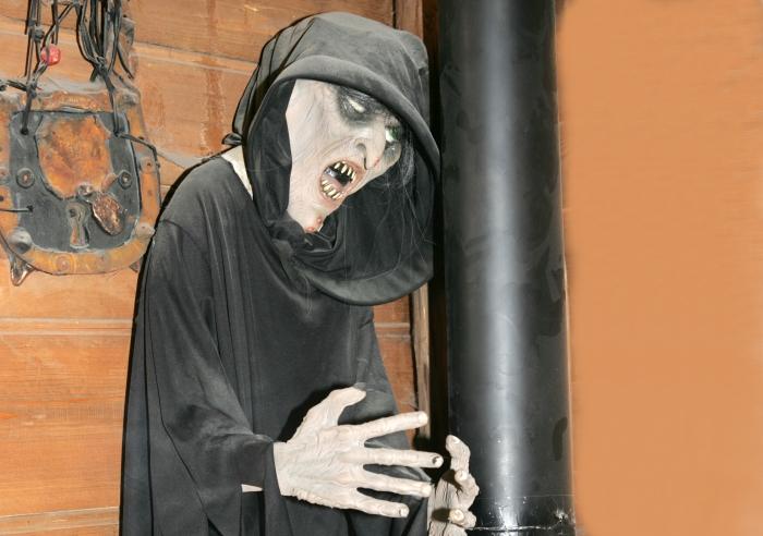 Vrăjitoare la balul strigoilor