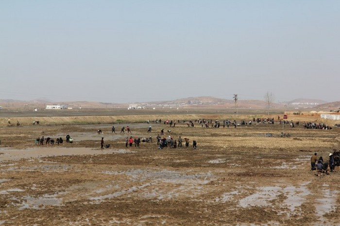 Lucrătorii de la o fermă din apropierea portului Nampo în provincia Phyongan în aprilie 2011.