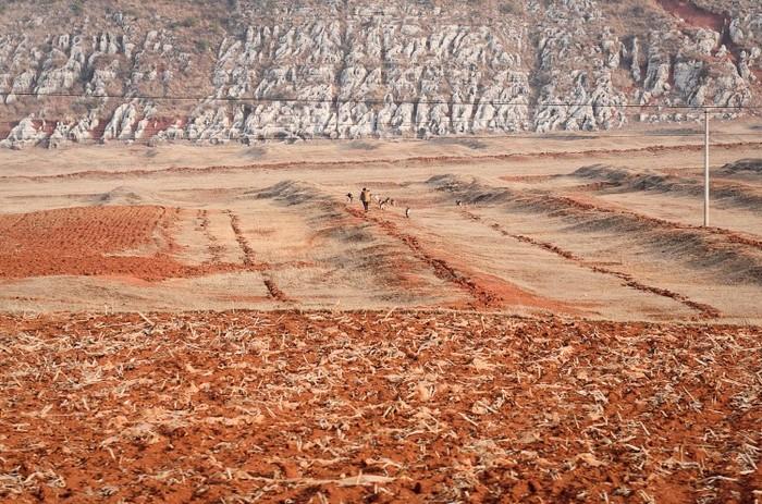 Un fermier chinez pe câmp după o secetă prelungită în Fuyuan, sud-vestul Chinei, provincia Yunnan pe 20 februarie 2012.