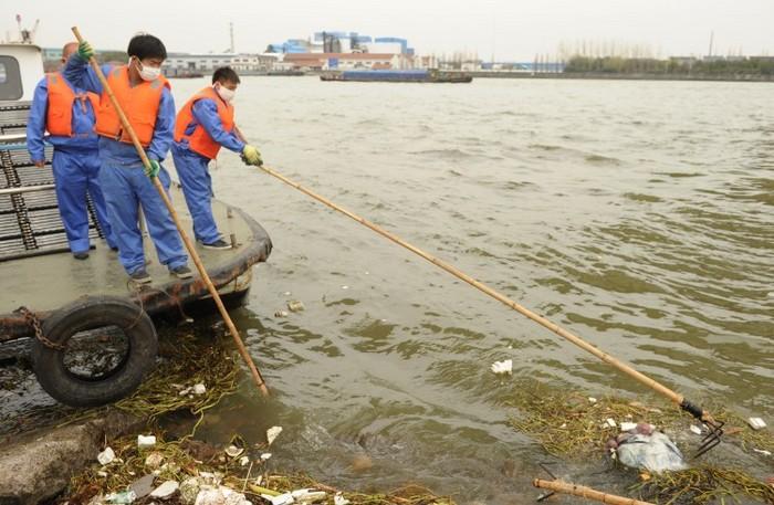 Anagajaţii de salubritate (stânga) colectează un porc mort de pe calea navigabilă principală din Shanghai, la 11 martie 2013. Aproape 6.000 de porci morţi au fost găsiţi plutind pe canalul navigabil principal din Shanghai, iar locuitorii şi-au exprimat temerile privind posibila contaminare a apei potabile.