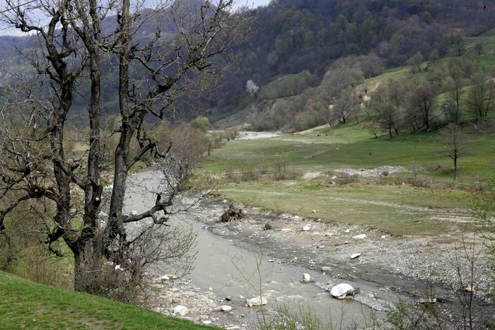Peisaj de munte cu râu şi pădure