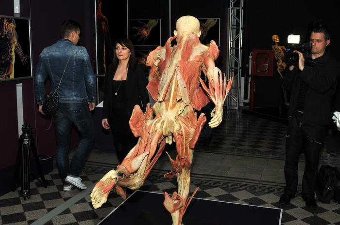 Muzeul Antipa, expoziţia The Human Body. În imagine, cadavre expuse