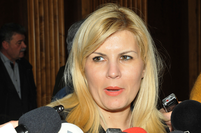 Elena Udrea, declaraţii de presă