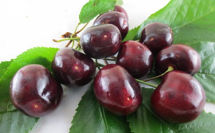tratament comun cu cireșe)