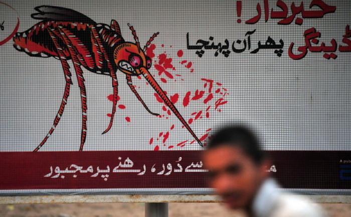 """Posterele unei campanii împotriva febrei tropicale """"dengue""""."""