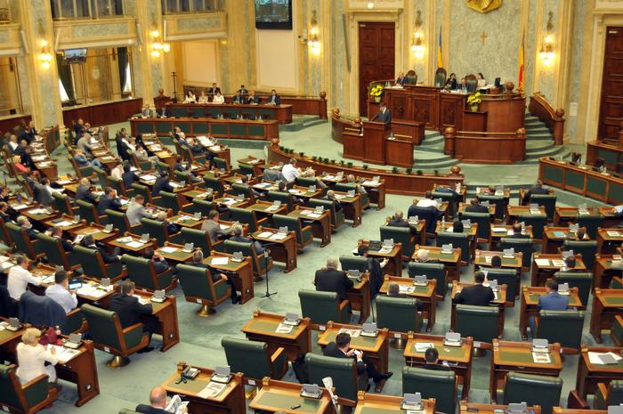 Şedinţă de Plen la Senat
