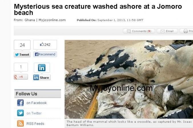 Monstru apărut pe plajele din Ghana