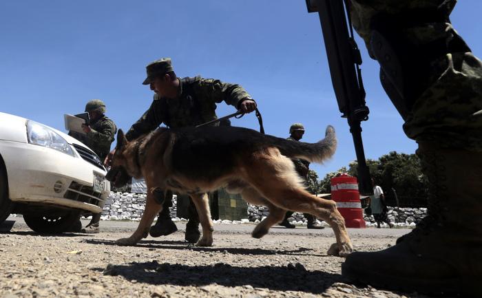 Poliţişti mexicani în timpul unor descinderi, 2 august 2013.