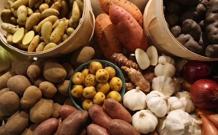 Ce produse trebuie să includem în mod prioritar în dieta de toamnă