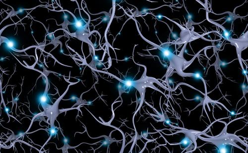 O simulare a şabloanelor neuronale repetabile ale celulelor creierului.