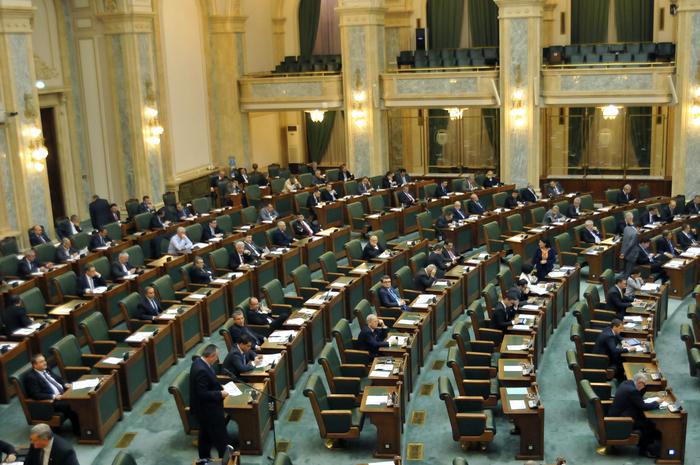 Parlamentul României, Senat, şedinţă în plen