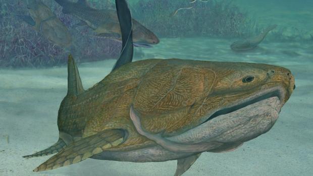 Restaurare animată bazată pe o fosilă de peşte care a trăit cu 400 de milioane de ani în urmă, descoperită în China
