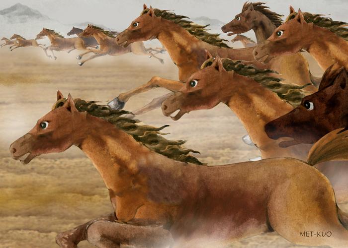 Mii de cai în galop