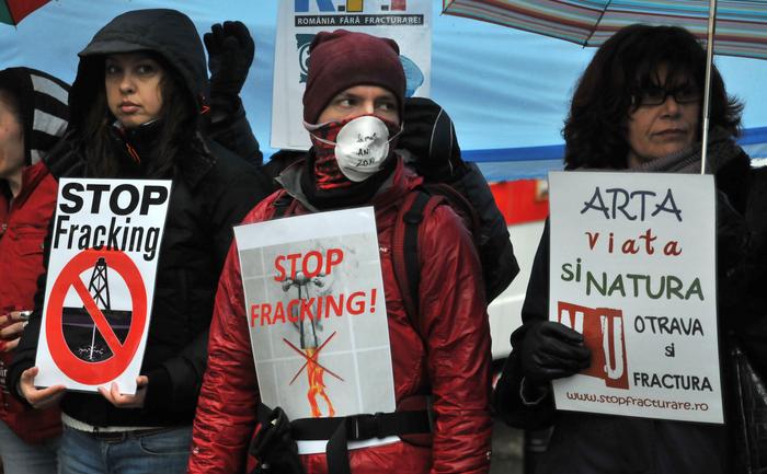 Protest în faţa sediului Comisiei Europene din Bucureşti. 21 ianuarie 2014
