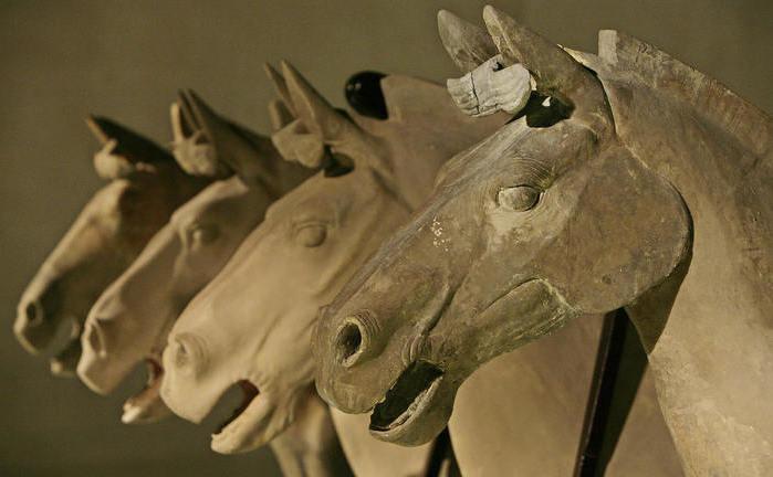 Cai de teracota. 31 ianuarie 2014 marchează începutul anului nou chinez. Anul acesta, Calul de Lemn.