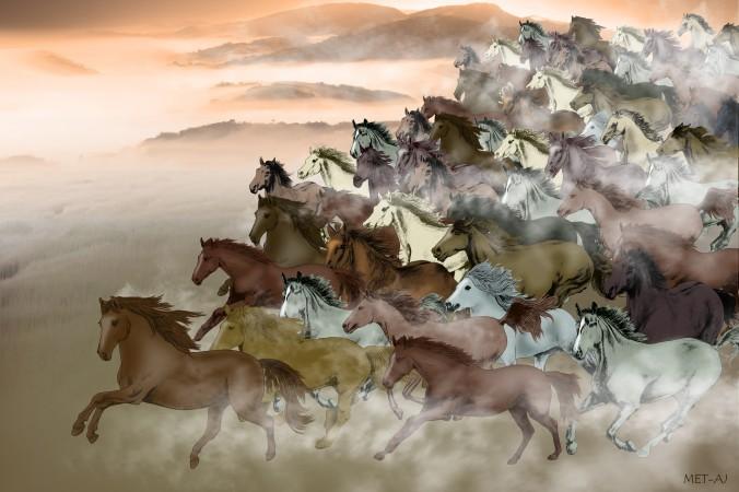 Caii curajoşi au fost onoraţi în istoria chineză