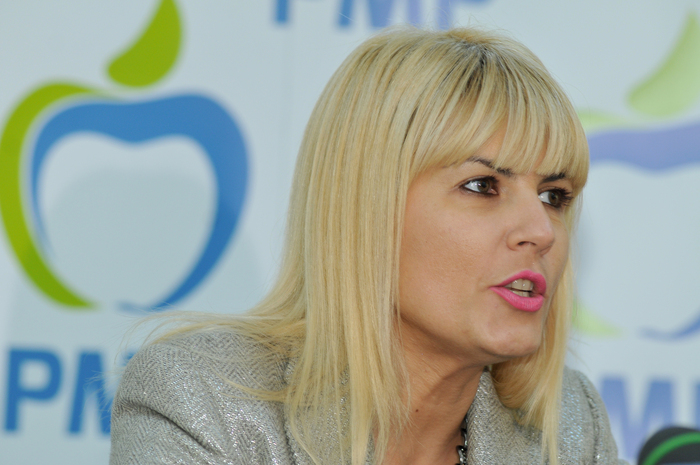 Elena Udrea, PMP