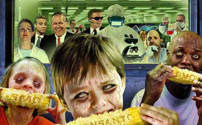 Pericolul consumului produselor din organisme modificate genetic.