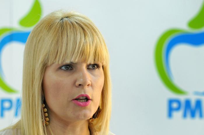Elena Udrea , PMP