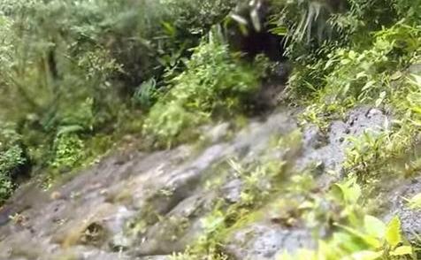 Structuri piramidale uriaşe ascunse în jungla ecuadoriană