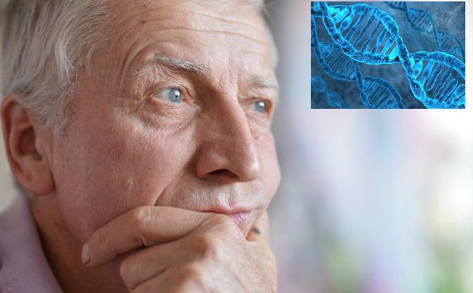 ADN-ul nu-ţi determină genele şi sănătatea, conform biologului expert Bruce Lipton.