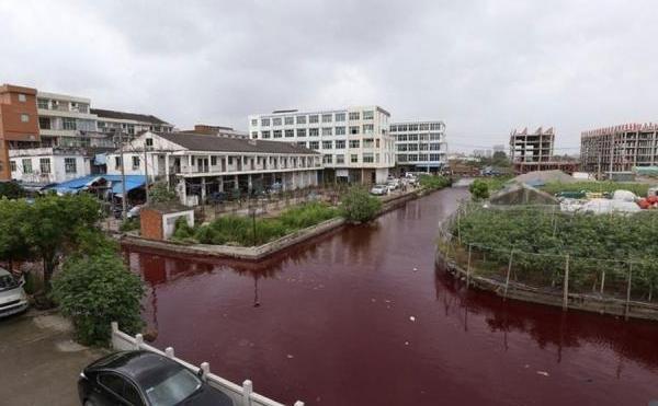 Canal de irigaţie chinez, devine roşu. Este neclar dacă din cauza algelor sau a unor substanţe chimice. 80% din apele Chinei nu pot fi folosite nici pentru zootehnie