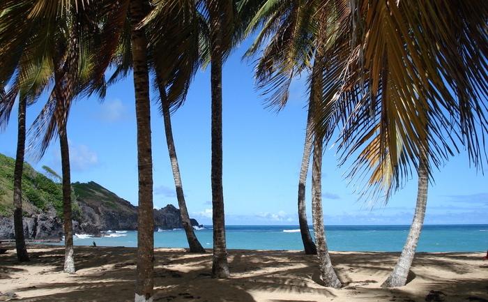 Les Salines, Martinica.