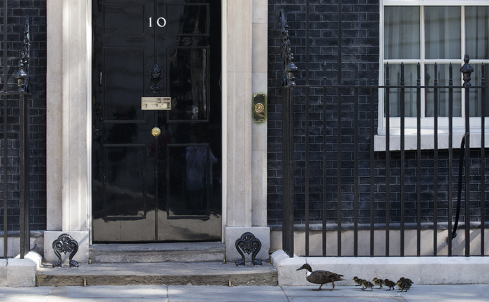 Reşedinţa premierului britanic, 10 Downing Street, Londra, Marea Britanie