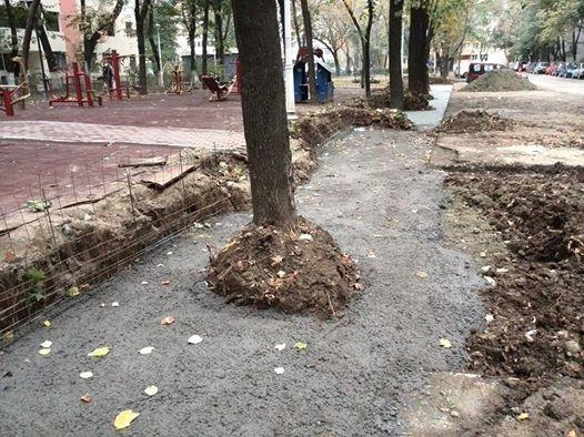 Copac betonat pe strada Intrarea Reconstrucţiei din sectorul 3, Bucureşti