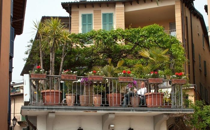 Balconul gradină