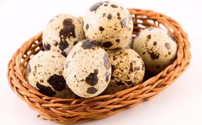 Oua de prepeliţă