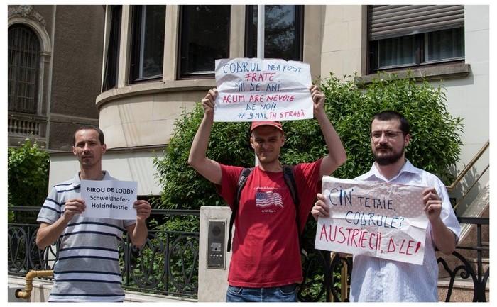 Protest la Ambasada Austriei.