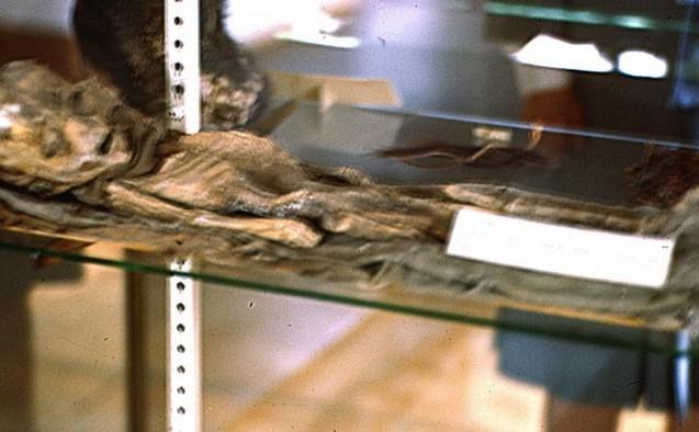 Una din cele două fotografii dezvăluite în mai 2015 cu presupusul extraterestru de la Roswell.