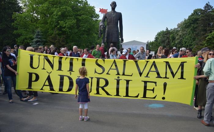 Proteste împotriva defrişărilor, 9 mai 2015