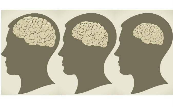 Creierul se micşorează cu vârsta