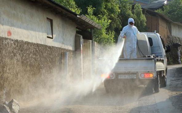 Un angajat în sectorul sud-coreean al sănătăţii stropeşte cu soluţie antiseptică într-un sat din districtul Sunchang, aproximativ 240 km sud de Seul, 19 iunie 2015.
