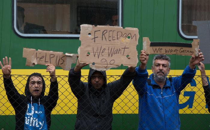 Lagăr pentru refugiaţi în Ungaria, la Bicske lângă Budapesta