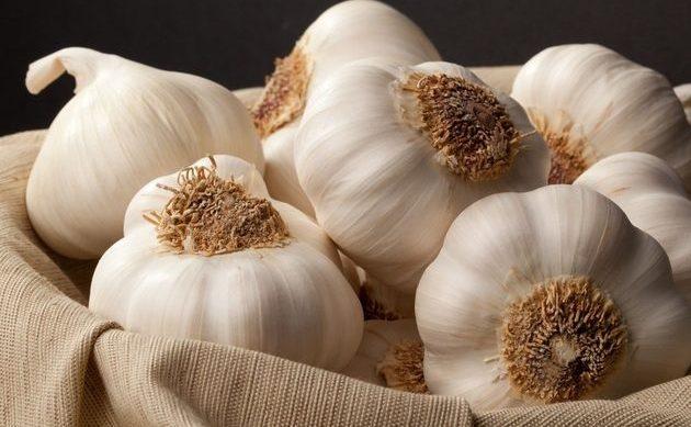 Beneficiile consumului de usturoi