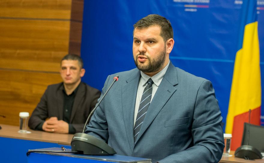 Dan Stoenescu, Ministrul delegat pentru Relaţiile cu Românii de Pretutindeni
