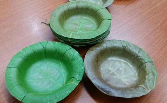 În Tailanda, s-au realizat farfurii de unică folosinţă confecţionate din frunzele arborilor. Ele le-ar putea înlocui pe cele din spumă de polistiren, fără să se piardă din calitate, dându-le aceeaşi utilizare.