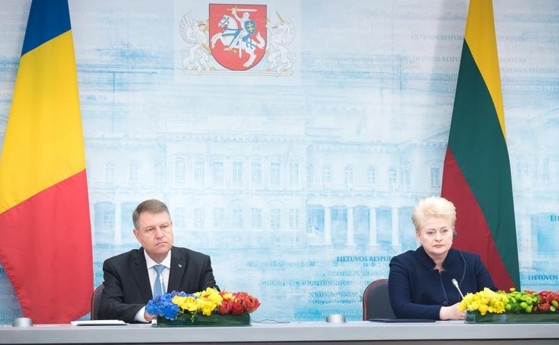 Klaus Iohannis şi DeliaGrybauskaitė