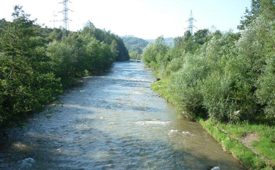 RâulJiu